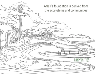 The Story of ANET