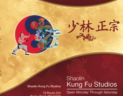 Kung Fu Brochure Print Design