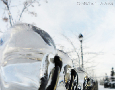 Whimsical Winter (i) - Photography