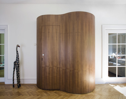 Toilet in wall