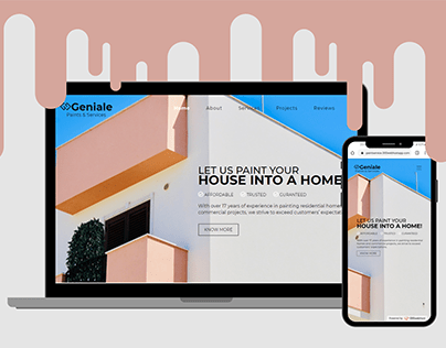 Landing Page Developed for Paint Company