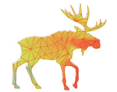 Geometrización Animal