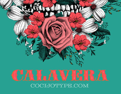 Calavera Collaboration