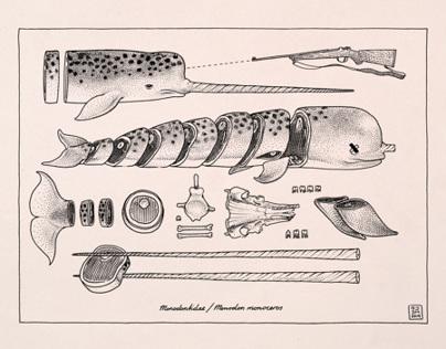 Sushi Cetacea