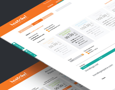 Hosting company branding & Web design
