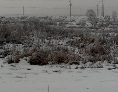 겨울 파주 im Winter in Paju
