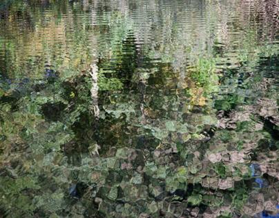 Réflexions sur l'eau / Reflections on water