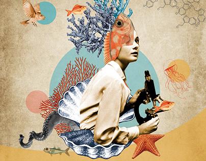 Trabajo de imagen - Collage - Morfología