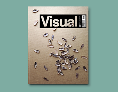 Visual magazine cover