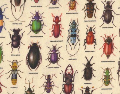 poster bugs x pijama ss2014 collection