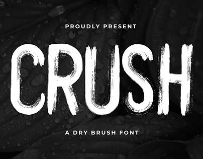 CRUSH A BRUSH FONT