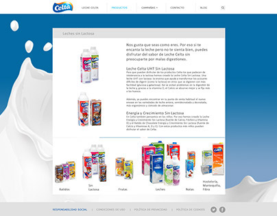 Web design for milk manufacturer