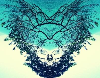 Espelho de Arvores