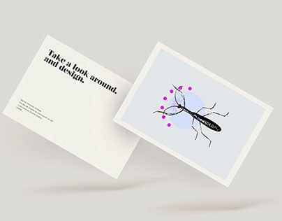Mantis Postcards