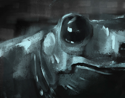 Disnei presents: A frog in the street.