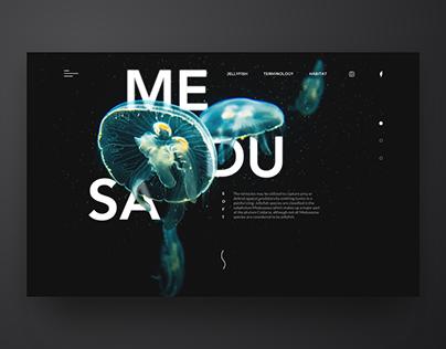 MEDUSA Landing Page