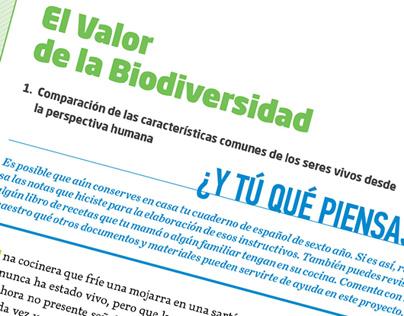 Editorial Patria. Colección Secundaria. Propuesta