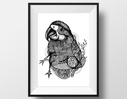 Illustrationer djur