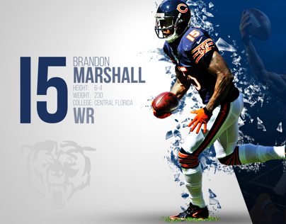 Chicago Bears 2014 Wallpapers