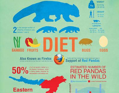 Red Panda Infographic