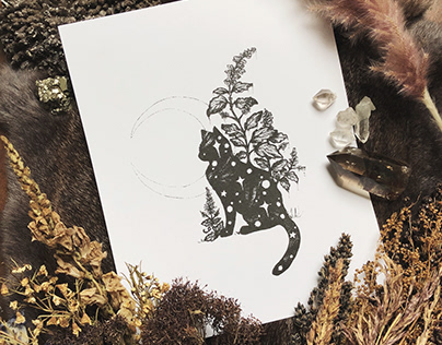 Cat Filled with Stars— Illustration