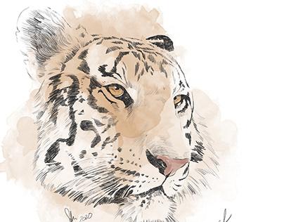 #endangeredweek vom Aussterben bedrohte Tiere.