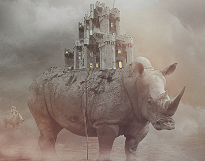 City of Rhinos