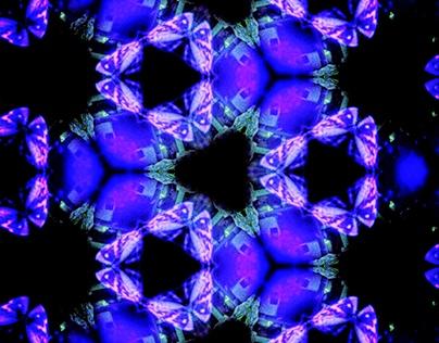 Kaleidoscope Kreatures
