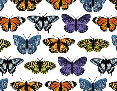 Seamless patterns | Butterflies