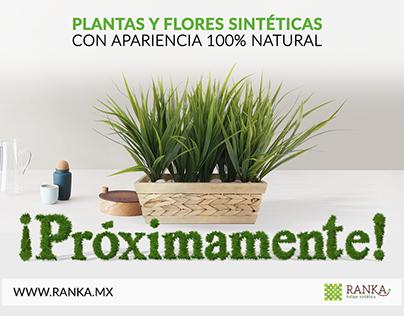 "Promo ""Próximamente"" Ranka Follaje Sintético"
