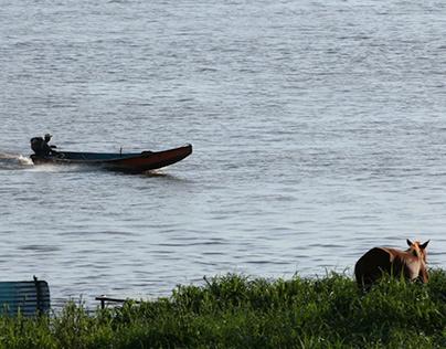 El punto del navegante. Chelías Villarroel (2017)