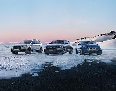 Audi winter team