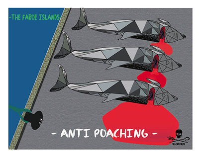 Opération Anti Poaching - Sea Shepherd