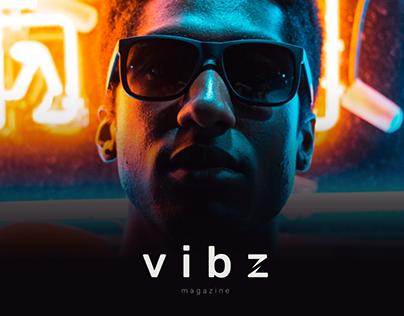 Vibz Blog Project