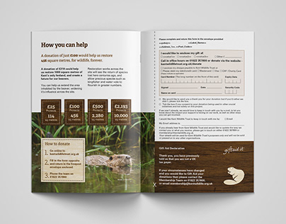"""Ham Fen: A Beaver's Tale"" Kent Wildlife Trust Appeal"