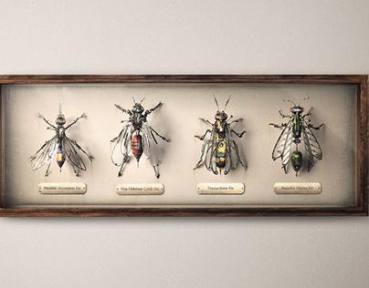 ANZ Wasps