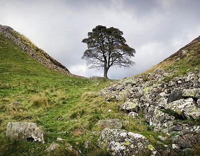 Hadrian's Wall Walk - my best photos & best views
