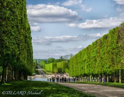 Château de Versailles (78)