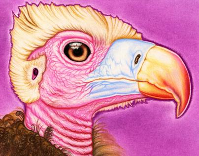 """Vulture Baby"" 8x10"" work"