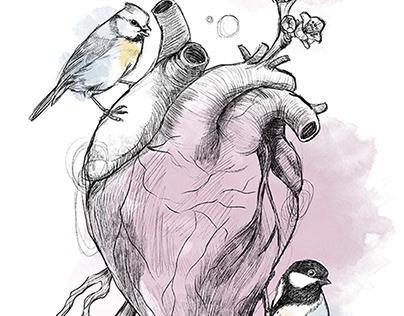 Meisen und Herz
