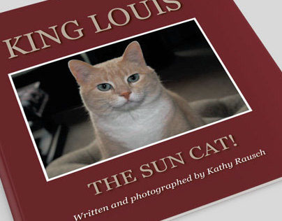 King Louis Children's Book