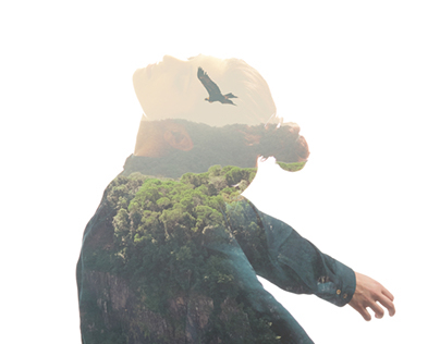 Consciousness, Mind and Spirit