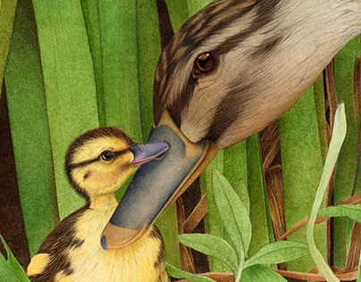THE DUCKLING