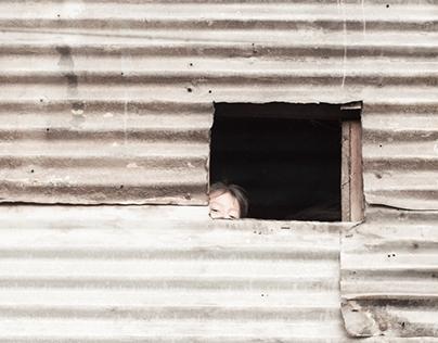 Children of the Dump