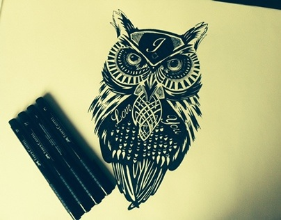 Owl, illustration
