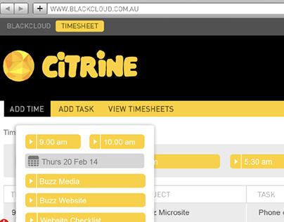 CITRINE Timesheet Feature 'Auto Detect' | BlackCloud