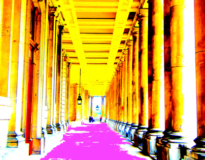 Vibrant Paths   photography and digital art