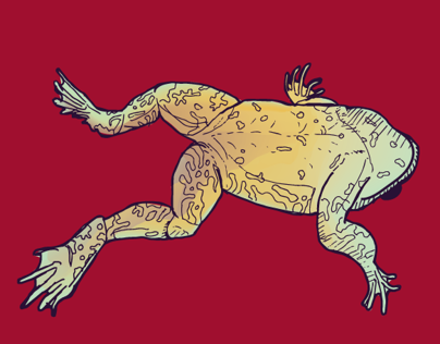 The Amphibian Biodiversity Crisis