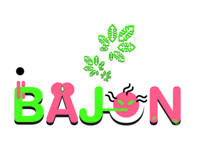 """Sistema Gráfico el Festival """"Bajon"""""""