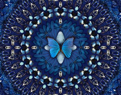Les Merveilles bleues I